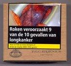 Hajenius Kleine Tuitknak Sumatra sigaren 50