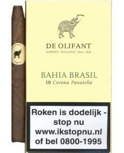 Olifant Sigaren Corona Brasil